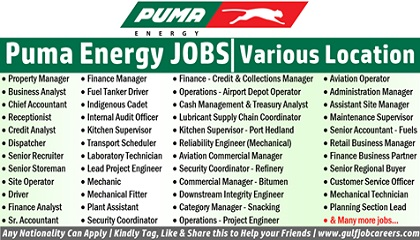 Photo of Puma Energy Employment & Jobs
