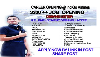 Photo of Indigo Airlines Job Vacancies Available