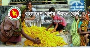 Bangladesh Sericulture Development Board published a Job Circular