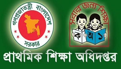 Photo of Primary Job Circular 2019 Notice