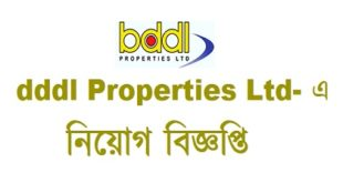 dddl Properties Ltd