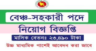 Bench-assistant Job Circular.