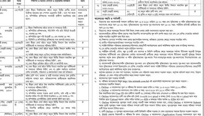 Photo of Bangladesh Govt published a Job Circular.