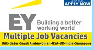 Latest Jobs at Ernst & Young - EY