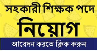 Teacher Job Circular 2019