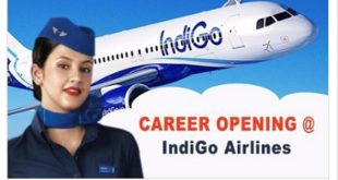 Indigo Airlines Job Vacancies Available