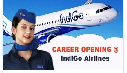 Photo of Indigo Airlines Job Vacancies Available