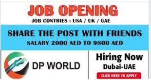 DP World Job Vacancies
