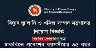 Power, Energy and Mineral Resources Ministry published a Job Circular.