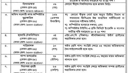 Photo of Job Circular Govt