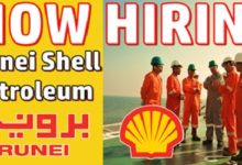 Photo of Brunei Shell Petroleum Jobs & Careers (BSP)