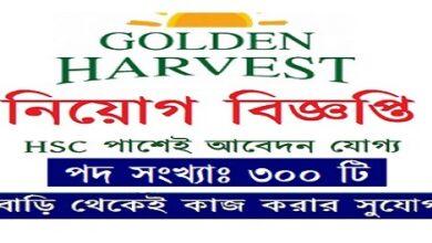 Photo of Golden Harvest InfoTech-Online Data Entry Operator (Work from Home)