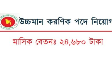 Photo of Upper Division Clerk Job Circular