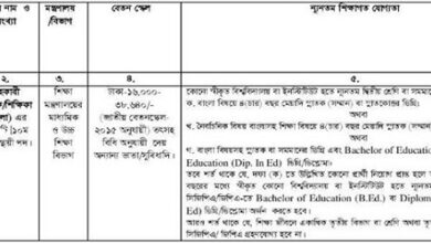 Photo of Teacher Job Circular 2020