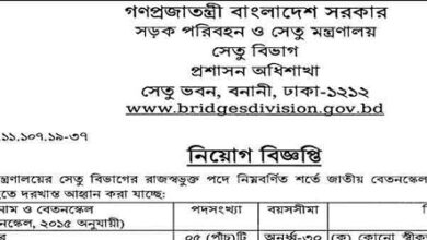 Photo of Bridge Division Job Circular 2021